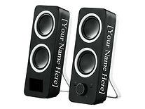 _) Speaker 2.jpg