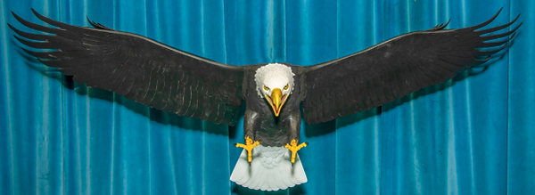Pat's Eagle.png