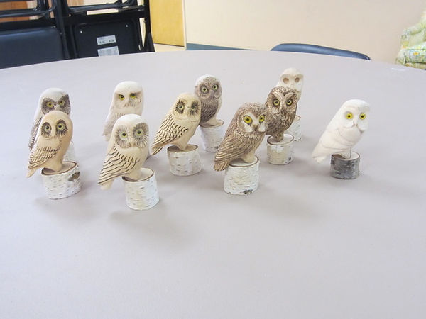 owl group 2.jpeg