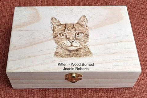 Cat Box 3.jpg
