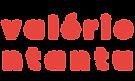 Huisstijl 2020 - logo valerie ntantu ::