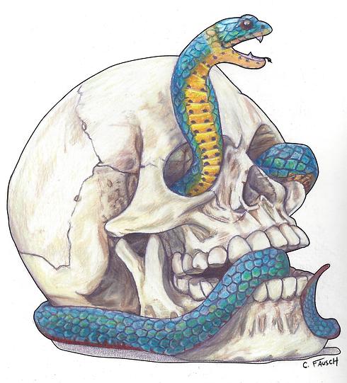 SnakeSkull.png