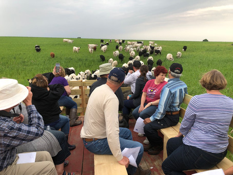 What is a Grazing Tour?