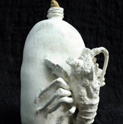 Crayfish bottle