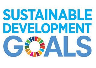 Developmental Economics: The Many Names of SDGs