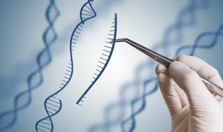 The Narrative Around Gene Editing Needs to Become Smarter