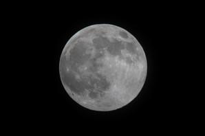 Pink_Moon.jpg