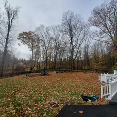 Before Fall Cleanup