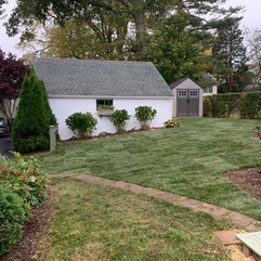 Process of Installing Sod