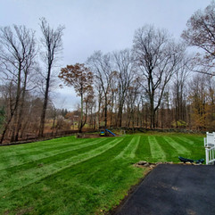 After Fall Cleanup