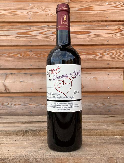 Côtes de Gascogne Esprit de Peyris rouge
