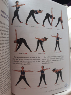 Asanas sequences taught by Krishnamacharya to Srivatsa Ramaswami
