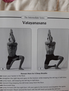 David Swenson practise manual gicing variations and modifictions for asanas