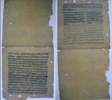 The Hathabhyasapaddhati, a recently discovered 17th century hatha yoga manual hiding among the Sritattvanidhi