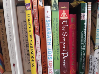 Part of Leanne's library
