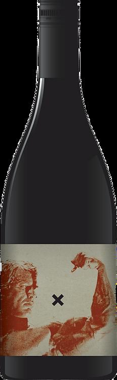 2013 X-Winery Big Gun