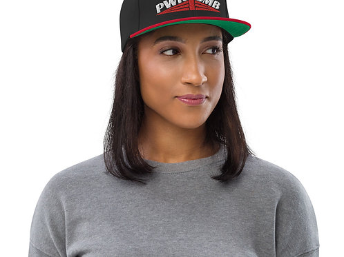 The Aviator Snapback Hat
