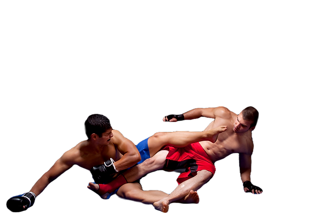 Grappling_edited.png