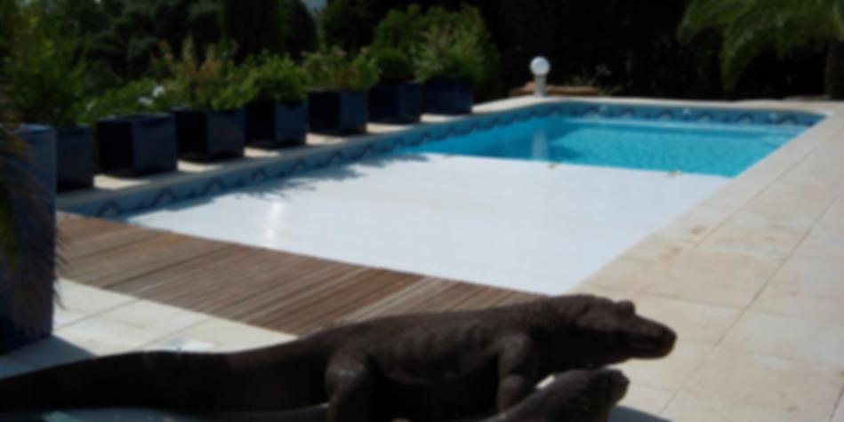 Schwimmbecken - Piscine - Polyester