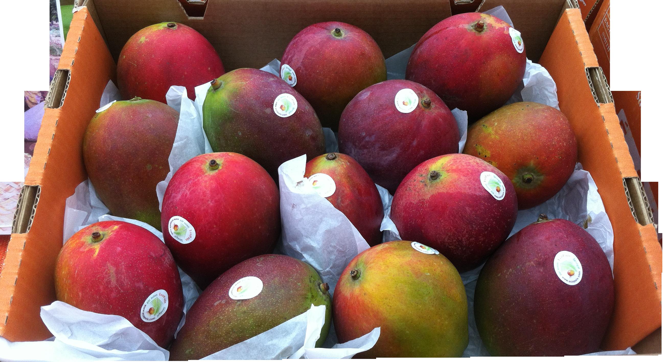 Carton de mangue