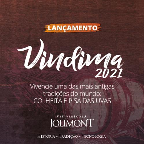 Vindima 2021