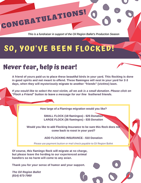 you've been flocked!.png