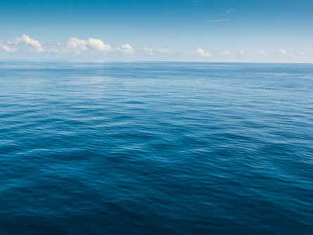The Oceans are Acidifying