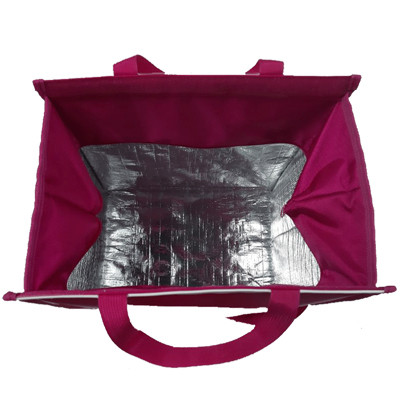 Extendable Insulation Thermal Bag