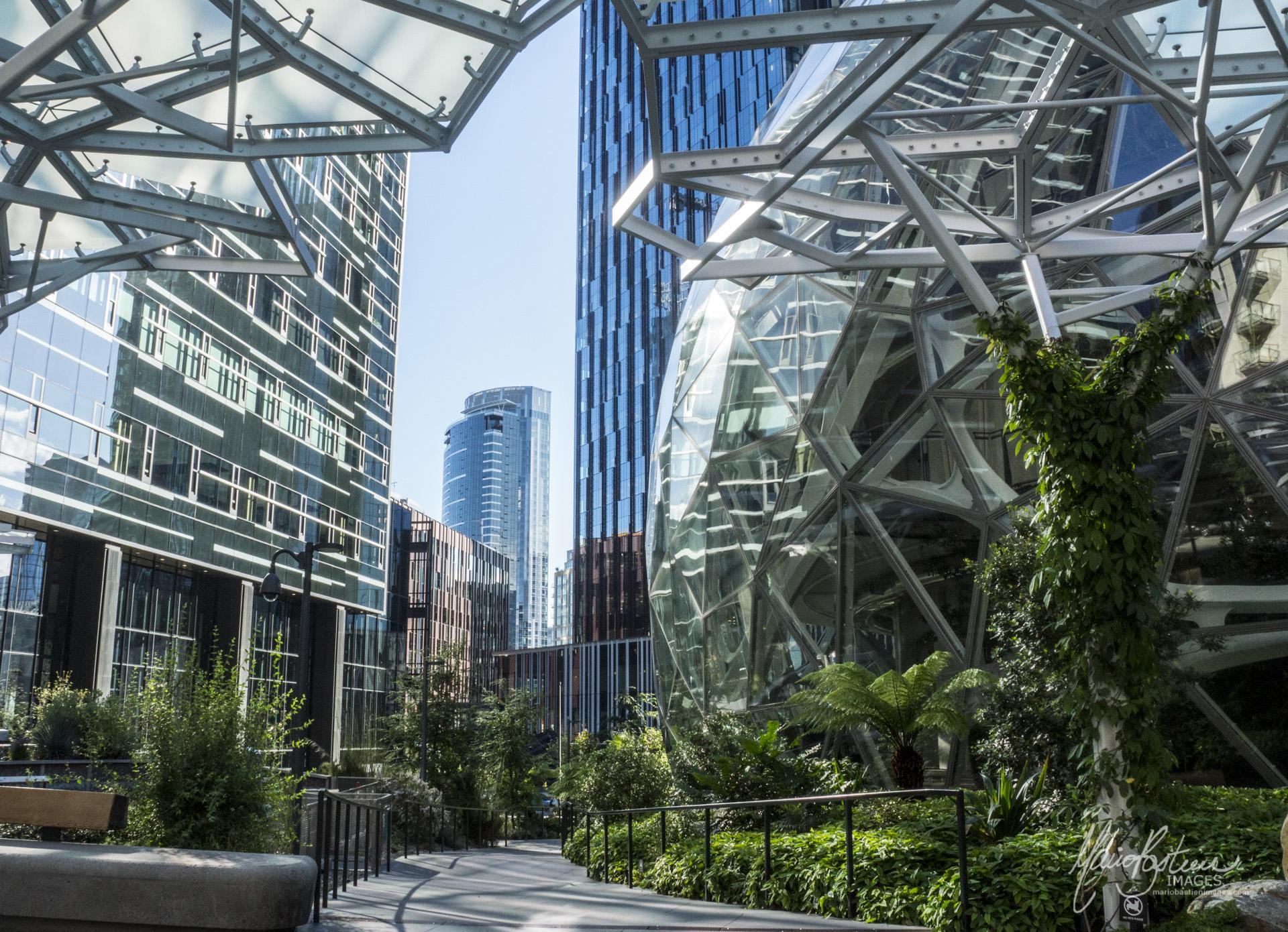 Les Sphères Amazon