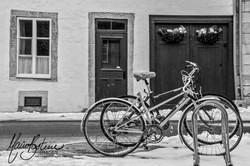 Vélos d'hiver