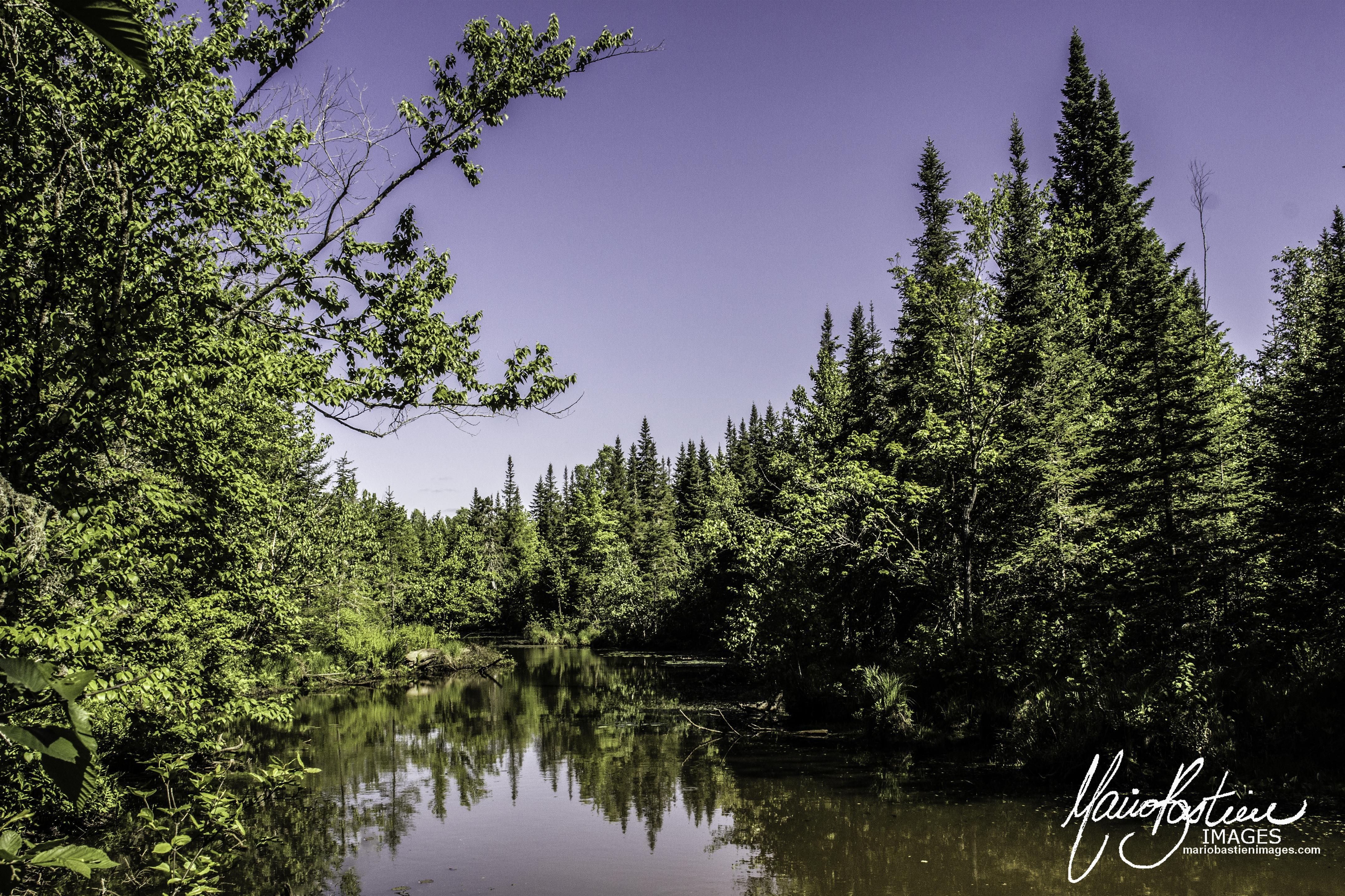 Les Marais du Nord