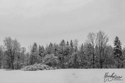 Panorama Hivernal
