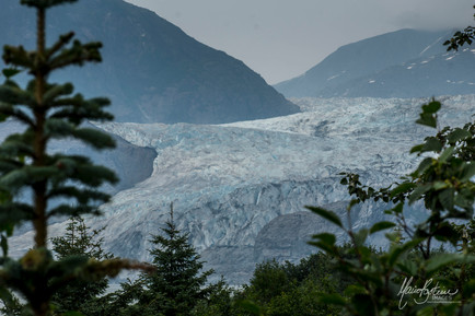 Le Glacier Mendenhall