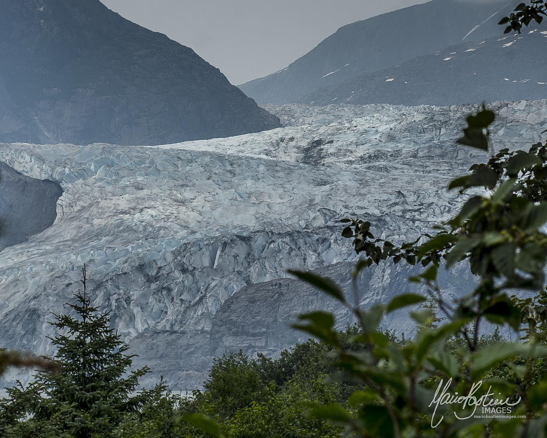 Glacier Mendenhall