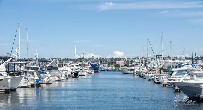 Marina Seattle
