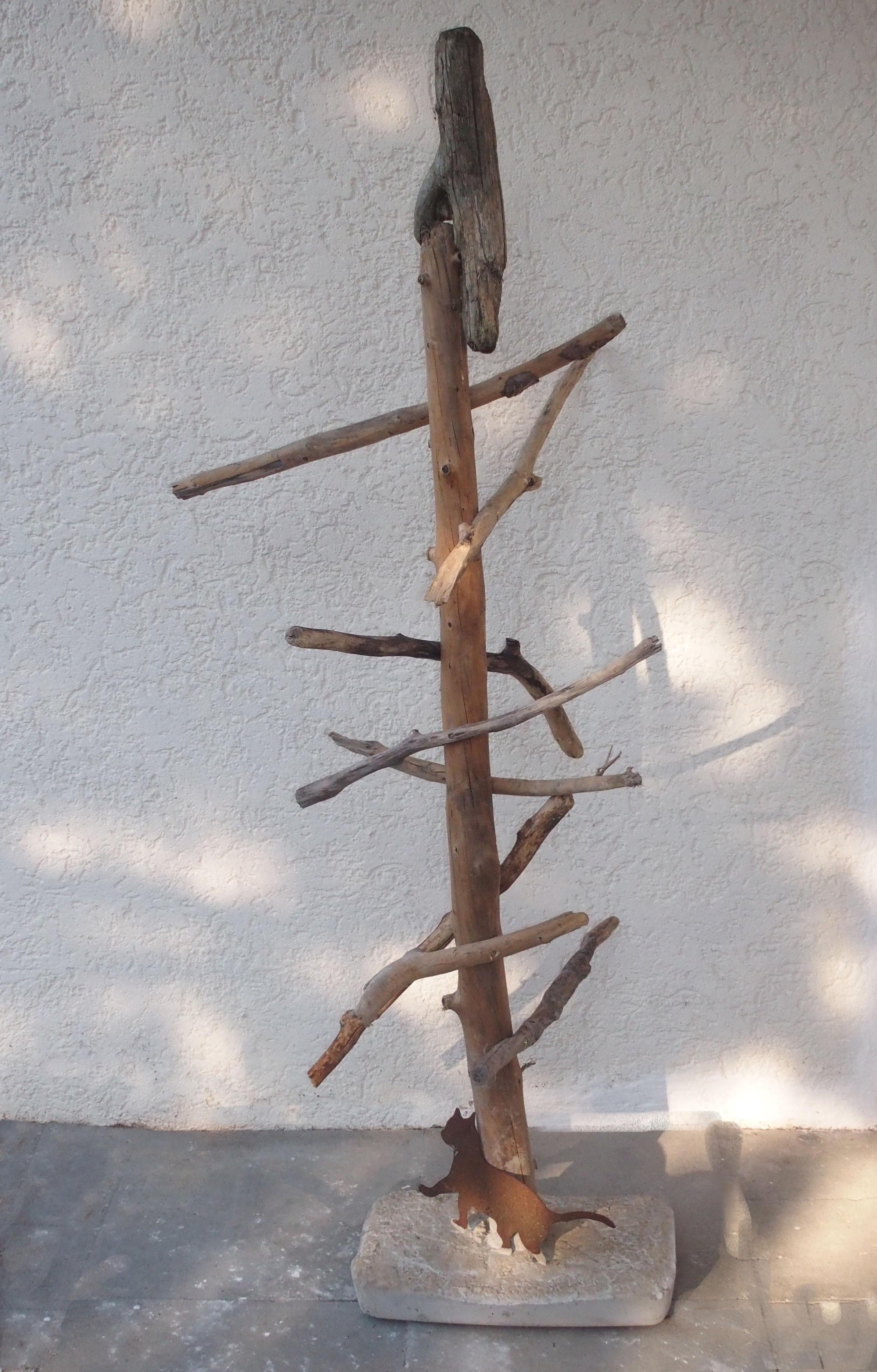 Katzenbaum 2016
