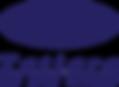 TDC-Navy-Logo.png