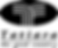 TDC Black PNG
