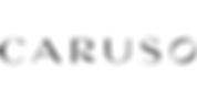 caruso-logo_ac48171c-bcbf-4041-a8fb-5f2c
