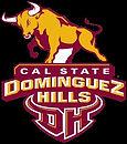 Cal State DH 1.jpg