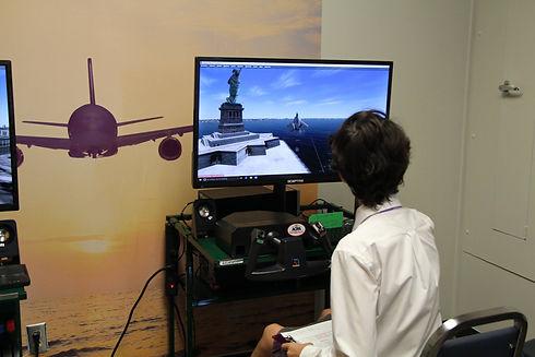 Flight Simulator.jpg