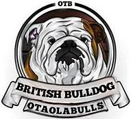 Otaolabulls_edited.png