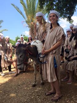 kfar kedem donkey