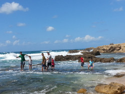 Dor Beach nature reserve