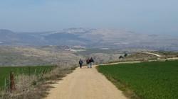 Galilee walk