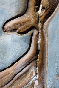Man in Stone, Point Lobos