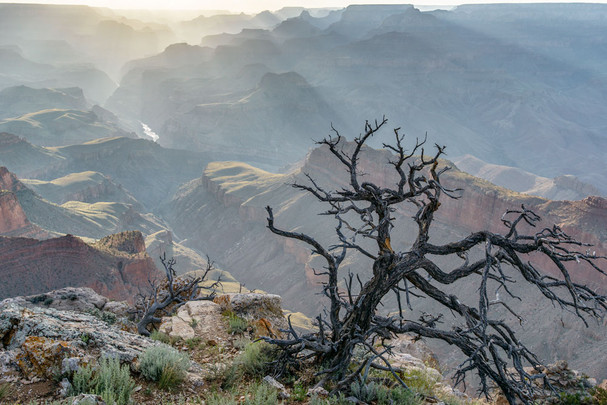 After the Storm, Grand Canyon