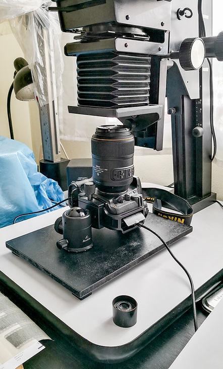 negative-repro-setup
