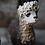Thumbnail: Envy Alpaca