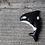 Thumbnail: Orca Magnet